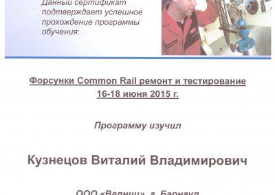 Диагностика и ремонт инжекторов Common Rail Delphi