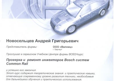 Диагностика и ремонт ижекторов Common Rail Bosch