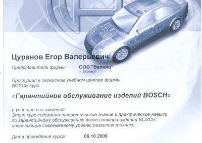 Гарантийное обслуживание изделий Bosch